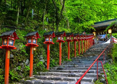 ls-the-green-maples-of-kifune-shrine