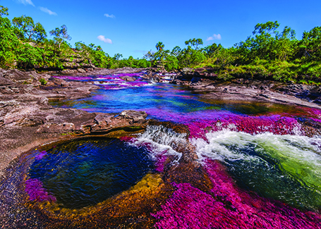ls-il-fiume-d-arcobaleno